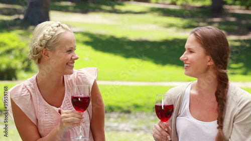 Two women having wine in the park as they talk to