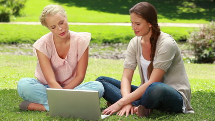 Two girls use a laptop while sitting in the park and then look