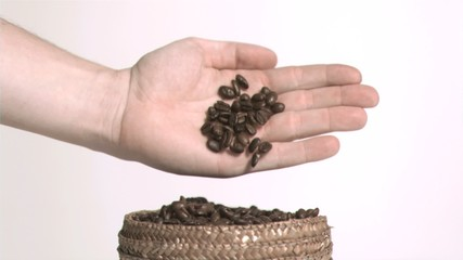 Coffee seeds in slow motion