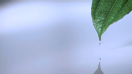 Water droplet falling in super slow motion