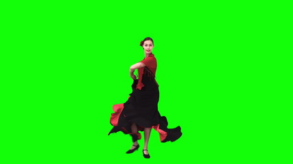 Flamenco dancer in slow motion