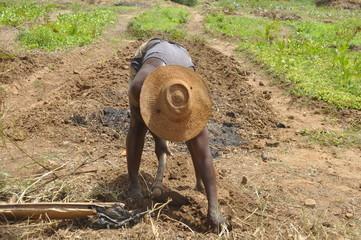 Feldarbeit in Afrika