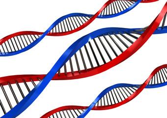 DNA Strands over white background