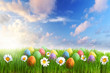 Easter eggs decorated with flowers in the grass over blue sky