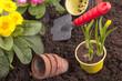Gartenarbeit - Blumebeet - Blumen einpflanzen
