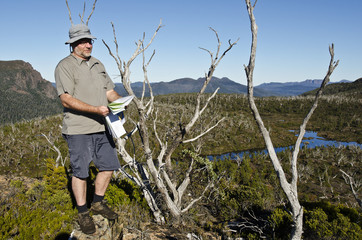 Male hiker reading map in wilderness. Tasmania, Australia