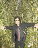 Businessman pushing past tall plants