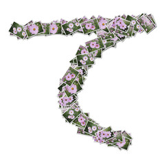 Japanese Characters hiragana, made from flower photo.
