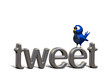 canvas print picture - Blue twittering bird standing on the word tweet