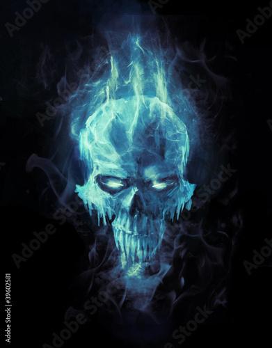 ice skull