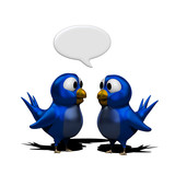 Blue twittering birds with speak balloon