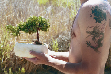Man with tattoos carrying bonsai tree