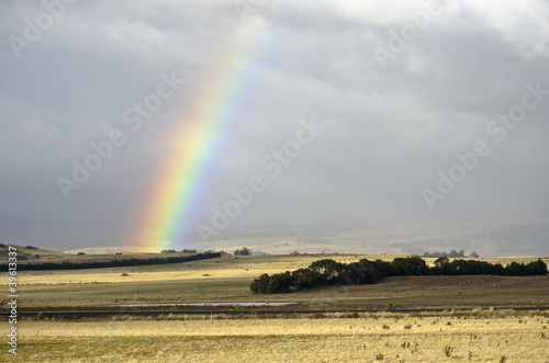 Rainbow on pasture, Campbell Town, Tasmania