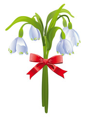Bouquet of snowdrops with a red bow