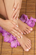 Pedicure Manicure Spa