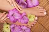 Fototapety Pedicure Manicure Spa