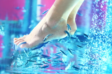 Pedicure fish spa - rufa garra