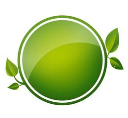 green blank button