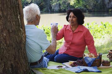 Senior Hispanic couple having a picnic
