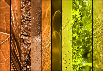 abstract nature collage