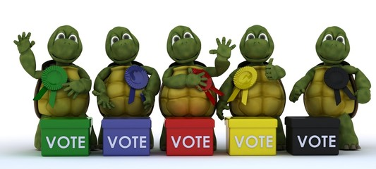 tortoises canvasing for votes in election