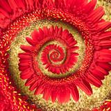 Fototapeta czerwony - spirala - Znak / Symbol