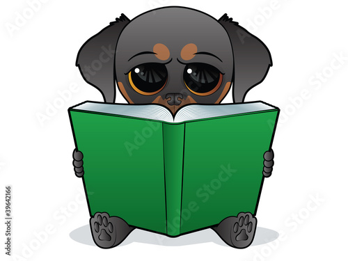 Puppy character reading a big open book