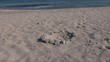 Circulo de piedras en la playa