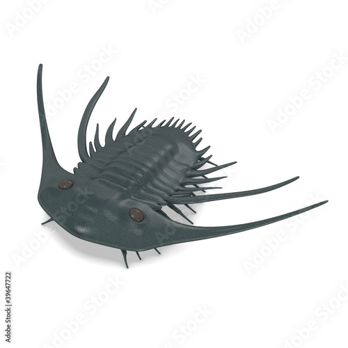 3d render of trilobite animal