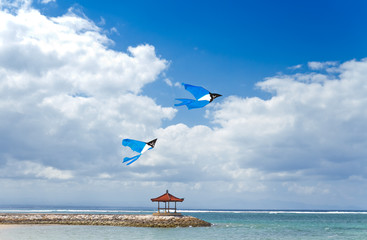 Kites flying on a blue cloudy sky at tropical beach