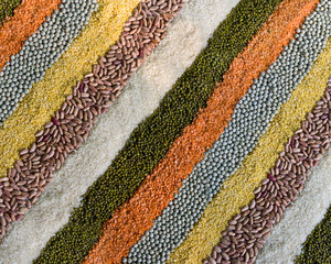 colorful striped rows of dry beans, legumes, peas