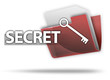 "3D Style Folder Icon ""Secret"""