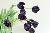 Букет черных тюльпанов в вазе