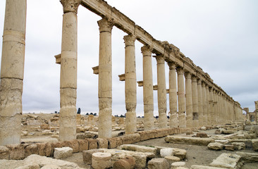 The decumanus at Palmyra
