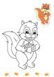 animali da colorare, scoiattolo