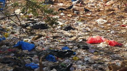 Garbage India