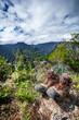 Randonnées dans les montagnes réunionnaises