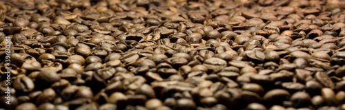 Coffee in grains close up
