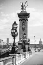 The Alexandre III bridge