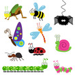 Cute Collection of Vector Bugs