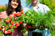 Gardening in summer - couple with herbs and flowers