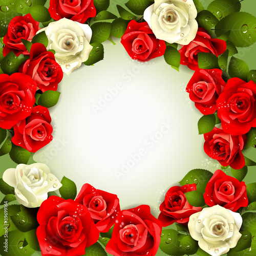 Background with white and red roses