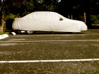 an image of car in parking lot
