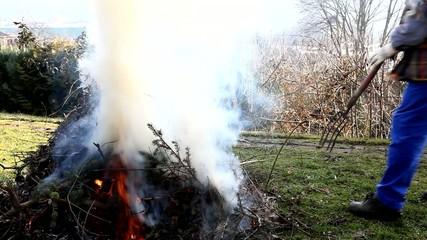 Baumschnitt verbrennen