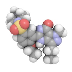 sildenafil: molecular structure (3D)