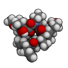 tacrolimus: molecular structure (3D)