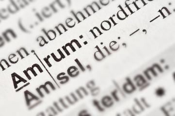 Amrum im Wörterbuch markiert