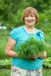 woman with harvested dill