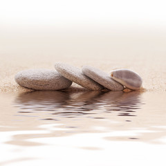 Galets zen et coquillage