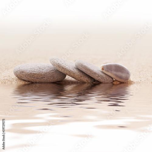 Galets zen et coquillage - 39729575